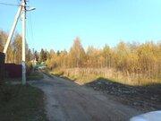 Участок 12соток в д. Золотилово - Фото 3