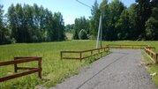 Продаю участок, ш. Горьковское, 50 км, Грибовское - Фото 1