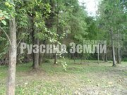 Редкое предложение - лесной участок в 300м от Озернинского водохр-ща - Фото 2