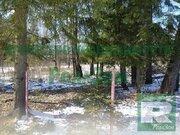 Земельный участок 10 соток в Калужской области деревне Тимашово ПМЖ - Фото 4