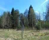 Лесной участок, с. Купань, (м. Шастово) - Фото 1