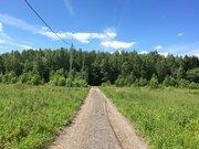 Земельный участок 12 соток в деревне Повадино - Фото 2