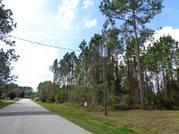Продается земельный участок в г. Палм Кост, Флорида США - Фото 2