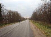 Земельный участок 25 соток (лпх), д.Елино - Фото 2