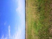 Земля с/х назначения 50 км от МКАД - Фото 2