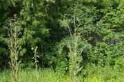Продается дача в деревне Крутовец на участке 16 соток - Фото 2
