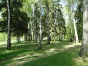 18 соток на берегу Москвы-реки с лесными деревьями - Фото 2