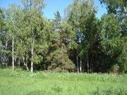 Продажа земельного участка в г. Всеволожск - Фото 3