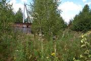 Продается участок у края леса в д. Сергеиково - Фото 4