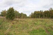 Продажа земельного участка 32 сот. в д. Токарево - Фото 4