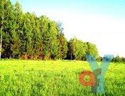 Участок 9 соток с эл-вом 65 км МКАД, Новорязанское шоссе - Фото 1