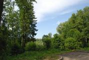 Уникальный экопоселок Новолеоново - Фото 1