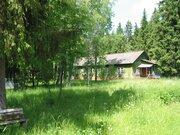 Продажа участка 25 га под базу отдыха (бывший пионерский лагерь) - Фото 3
