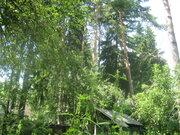Продаю лесной уч-к 12 сот. в п.Ильинский, ПМЖ, ИЖС, центр. коммуникац. - Фото 5