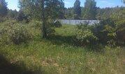 Участок 15 соток в д. Асташково, сосновый лес, озеро, река, эл-во 15 к - Фото 1