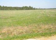 Участок сельхозназначения Переславский район недорого - Фото 2