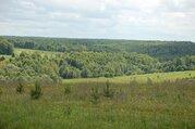 Продаю земельный участок у Оки - Фото 4