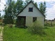 Дача в СНТ «Полесье» на границе березового леса - Фото 3