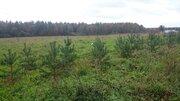 Участок 89 соток земли промышленности в д. Морозово, 42 км от МКАД - Фото 4