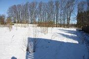 Продам земельный участок 10 сот. в д. Анино - Фото 3