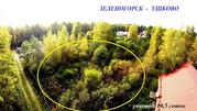 Зеленогорск-Ушково участок 10.5 соток - Фото 1