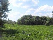 Участок в дер. Серговка Калязинского района Тверской области - Фото 4