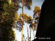 Старый дом на Загорянке лесной участок 30 сот. - Фото 3
