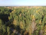 Лесной участок 20 соток д. Копнино ИЖС - Фото 5