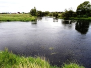 Участок в деревне 30 соток, на берегу реки Протва. - Фото 5
