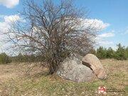 Земельный участок 60 сот на берегу реки Медведица д. Молоди - Фото 2