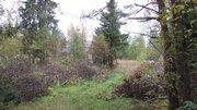 Красивый участок 19 сот в п. Судаково - Фото 5