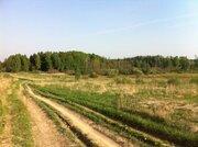 Земельный участок 25 соток в д. Становище - Фото 1