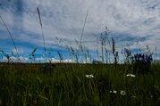 Земельный участок в МО Каширского района д.Злобино, 42,8 га - Фото 5