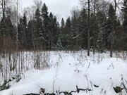 Лесной участок 20 соток в пжкиз Назарьево - Фото 3