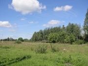 Участок 9с в СНТ рядом с Рогачево, свет, лес - Фото 2
