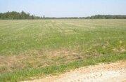 Участок сельхозназначения Переславский район недорого - Фото 3