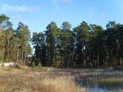 Кратово, жуковская сторона, 50 соток у озера - Фото 1