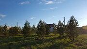 Лесной участок с соснами на Новорижском шоссе в 29 км от МКАД - Фото 4