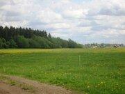 Земельный участок 165 соток с/хоз назначения рядом с деревней - Фото 2