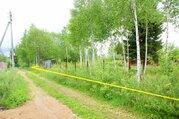 12 соток в СНТ Пульсар д. Васильевское Волоколамского района МО - Фото 2