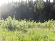 Участок 15,46 соток в поселке «Эра» вблизи г. Калязина Тверской обл. - Фото 3