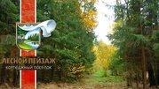 """Участок 30 км по Калужскому ш, кп """"Лесной Пейзаж"""" - Фото 4"""