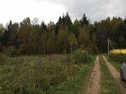 Продаются участки в лесу, 200 соток. Московская область, Можайский рай - Фото 5