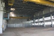 Сдам производственное помещение 3420 кв.м.