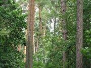 Рублево-Успенское ш. 7км. д. Барвиха ДПК «Новь» участок 13.3 сотки. - Фото 1