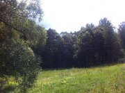 Участок 10 соток ИЖС д. Легчищево Чеховский район - Фото 3