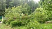 Участок в лесу - Фото 3