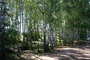 Участок 15 соток, 1 линия от пруда, в лесу, д. Сафоново, г. Чехов. - Фото 4