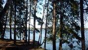 Красивый участок, ш. Горьковское, 50 км, Алексеево д. - Фото 1