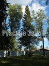 Редкое предложение - лесной участок в 300м от Озернинского водохр-ща - Фото 1